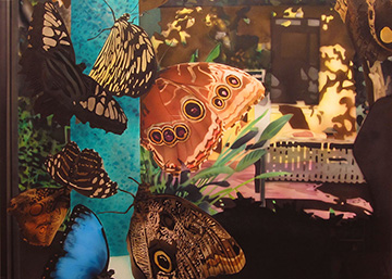 painted image of butterflies